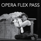 Flex-pass